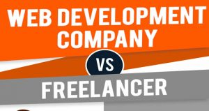 Info-graphic: The Difference Between a Web Design Company And a Freelancer.